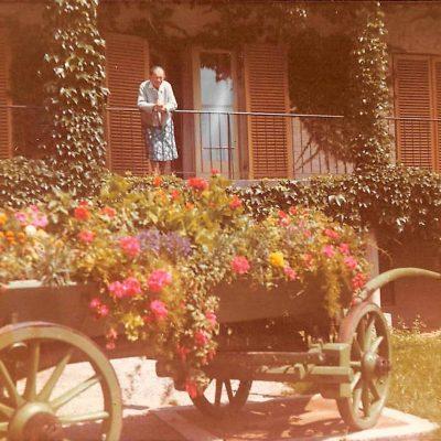 Der Blumenschmuck im alten Altersheim in Jenbach. Herzlichen Dank an Herrn Christoph A. Meindl für das tolle Foto!